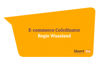 e-Commerce Coördinator