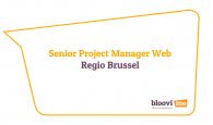 Senior Project Manager Web